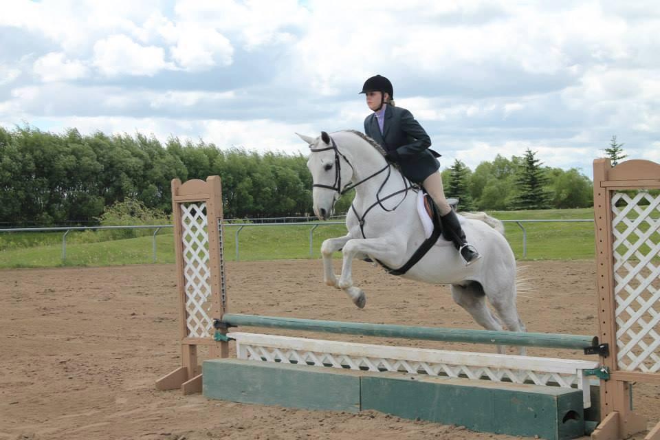 Keno Hill Stable and Tack Shop » Aurora Arabian Horse Show