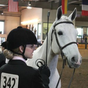 Cassidy Newbold and KHS Rocket Man at Aurora Horse show